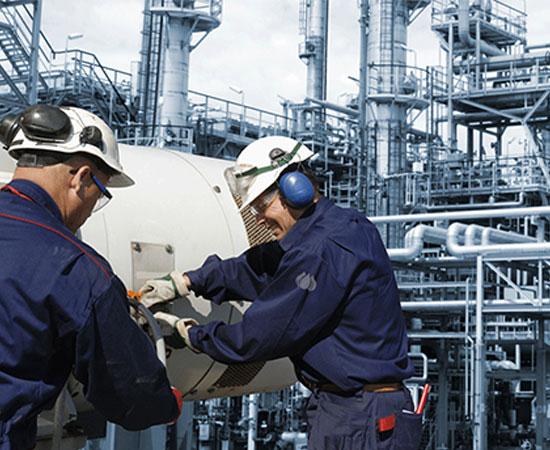 Industria energética, petroquímica, minera, cementera, química e hidrocarburos.
